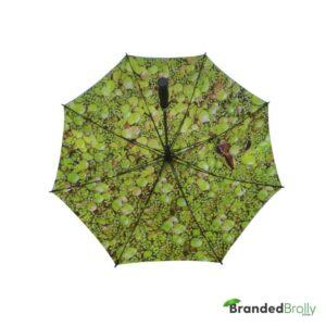 Dual Canopy Print Promotional Golf Umbrella